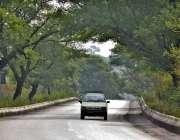 اسلام آباد: وفاقی دارالحکومت میں سڑک کے دونوں اطراف لگے درخت خوبصورت ..