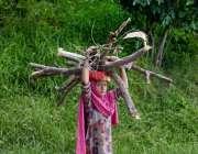 راولپنڈی: ایک خانہ بدوش لڑکی اپنے گھر کھانا بنانے کے لئے لکڑی لے کر ..
