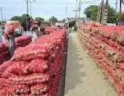 اسلام آباد: مزدور سبزی منڈی میں فروخت کے لیے پیاز ٹرک سے اتار رہے ہیں۔