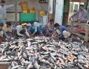 ملتان: فش مارکیٹ میں فروخت کے لئے مچھلیاں صاف کرتے مزدور