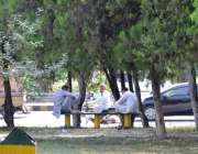 اسلام آباد: شہری گرمی کی شدت سے بچنے کے لیے درخت کے سائے تلے بیٹھے ہیں۔