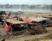 لاہور: گوالوں نے دریائے راوی کے خشک حصے میں قبضہ کر رکھا ہے۔