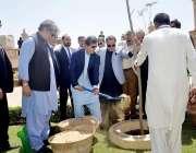 کراچی: وزیر اعظم عمران خان باغ ابن قاسم میں شجر کاری مہم کے تحت پودا ..