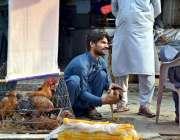 اسلام آباد: ایک شخص سڑک کنارے گاہک کو مرغیاں دکھا رہا ہے