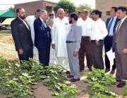 ملتان: وزیر اعظم کے مشیر برائے کامرس، ٹیکسٹائل انڈسٹری عبدالرزاق داؤد ..