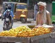 راولپنڈی: معمر ریڑھی بان پھیری لگا کر آم فروخت کررہا ہے۔