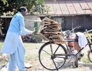 لاہور: ایک شخص گھر کا چولہا جلانے کے لیے لکڑیاں اکٹھی کر کے سائیکل کے ..