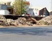 کراچی: واٹر پمپ پل کے ساتھ گرین بیلٹ کچرے کا ڈھیر بنی ہوئی ہے۔