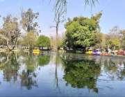 راولپنڈی: نیشنل ایوب پارک میں رنگ برنگی کشتیاں جھیل کنارے کھڑی ہیں۔