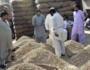 فیصل آباد: لوگ دانوں کی منڈی میں اسٹال سے مونگ پھلی خرید رہے ہیں۔