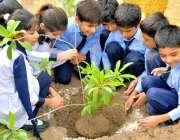 لاہور :محکمہ امداد باہمی کے تحت ہاؤسنگ سوسائٹیز میں سکولز کےبچے گرین ..