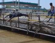سرگودھا: نوجوان گرمی کی شدت کم کرنے کے لیے نہر میں نہا رہے ہیں۔