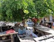 راولپنڈی: باغ سرداراں میں مزدور درخت کے سائے تلے ریڑھے پر سو رہے ہیں۔