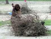 راولپنڈی: ائیرپورٹ روڈ پر ایک خانہ بدوش خاتون ، کھانا پکانے کے لئے سوکھی ..