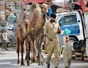 لاہور: خانہ بدوش اونٹنی کا دودھ فروخت کررہے ہیں۔