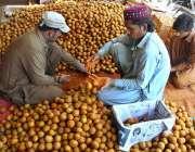 حیدر آباد: محنت کش چیکو لکڑی کی پیٹیوں میں پیک کر رہے ہیں۔