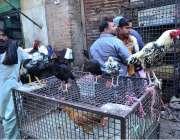 حیدر آباد: دکاندار دیسی مرغ فروخت کے لیے گاہکوں کامنتظر ہے۔
