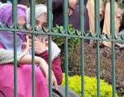 راولپنڈی ضلع بھر سے آئے ٹیچر پریس کلب کے باہر مطالبات کے حق میں احتجاج ..