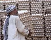 لاڑکانہ: معمر محنت کش ڈلیوری وین سے انڈے اتار رہا ہے۔