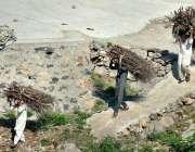 اسلام آباد: مقامی افراد گھر کا چولہا جلانے کے لیے خشک لکڑیاں جمع کیے ..