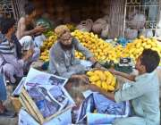حیدر آباد: مزدور لکڑی کی پیٹیوں میں آم پیک کر رہے ہیں۔
