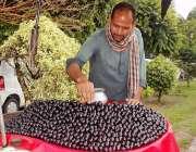 لاہور: دکاندار گاہکوں کو متوجہ کرنے کے لیے جامن سجا رہاہے۔