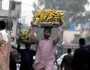 راولپنڈی: فروڈ منڈی میں مزدور کیلے کے ٹوکرے کولڈ سٹوریج سے بیوپاریوں ..