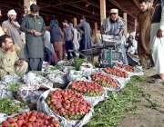 راولپنڈی: راجہ بازار فروٹ منڈی میں دکانداروں نے فروخت کے لیے اسٹرابری ..