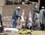 کوئٹہ: بکرا منڈی سے خریدای کے بعد کسائی بکرے ذبح کر رہے ہیں۔