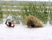 لاڑکانہ: نواحی دیہات کے رہائشی دریائے انڈس کراس کر رہے ہیں۔
