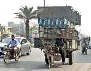 فیصل آباد: ایک مزدور گدھا گا ڑی پر بھاری سامان لاد کر لے جا رہا ہے جو ..
