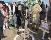 ننکانہ صاحب: وزیر اعظم عمران خان بلوکی میں پودا لگا کر شجر کاری مہم ..