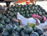 فیصل آباد: محنت کش اپنے سٹال پر آرام کر رہا ہے۔