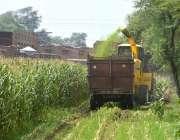 ملتان: کسان جدید مشینری کے ذریعے فصل کی کٹائی میں مصروف ہیں۔