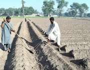 ملتان: کسان اگلی فصل کے لئے روایتی انداز میں اپنے کھیت کی تیاری کر رہے ..