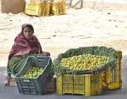 لاہور: ایک محنت کش خاتون جی ٹی روڈ پر لیموں فروخت کرنے کے لیے بیٹھی ہے۔
