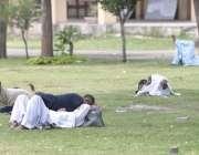 راولپنڈی: لیاقت باغ میں شہری دوپہر کے وقت درختوں کے سائے تلے آرام کر ..