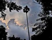 لاہور: صوبائی دارالحکومت میں دوپہر کے وقت آسمان پر گہرے بادل چھائے ..