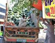اسلام آباد: مزدور ٹرک سے تربوز اتار رہے ہیں۔