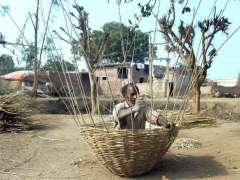 MULTAN: Worker busy in preparing traditional basket with branches of tree at his workplace.