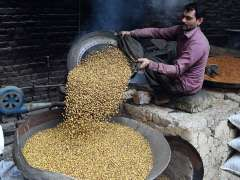SIALKOT: A worker busy in roasting gram (chenay) at his workplace.