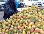 ملتان: ایک دکاندار سڑک کنارے  امرود فروخت کر رہا ہے۔