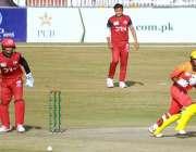 راولپنڈی، پنڈی کرکٹ سٹیڈیم میں جاری نیشنل ٹونٹی کپ میں ناردرن اور سندھ ..