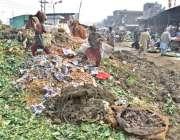 لاہور : خانہ بدوش بچیاں سبزی منڈی میں کوڑے کے ڈھیر سے سبزیاں اکٹھی کررہی ..