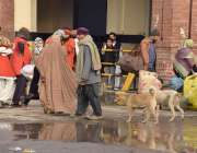لاہور: ریلوے اسٹیشن پرآوارہ کتے مٹر گشت کر رہے ہیں جوکہ ضلعی انتظامیہ ..
