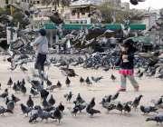کراچی: سندھ سکریٹریٹ کے قریب کبوتر چوک پر  بچے کبوتروں کیساتھ کھیل رہے ..