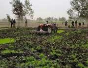 گوئی: میرپور ماتھیلو میں دھان کی کاشت پر پابندی عائد ہونے کے باوجود ..
