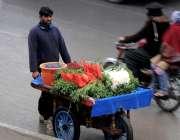 راولپنڈی: سلادفروش گھوم پھر کر اپنے ریڑھی پرمولی گاجر سجائے فروخت کر ..