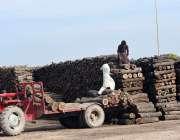 ملتان: قصبہ مرال کے مقام پر مزدور ٹریکٹر ٹرالی پر لکڑی کے ٹکڑے بھر رہے ..