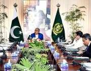 اسلام آباد: وزیر اعظم کے مشیر برائے خزانہ اور محصولات ڈاکٹر عبدالحفیظ ..